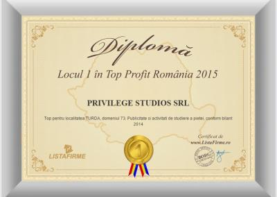 Top firme Romania 2014 2015 PRIVILEGE STUDIOS SRL CJ 1